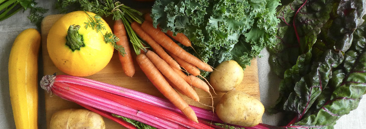 anmeldelse bæredygtig kost